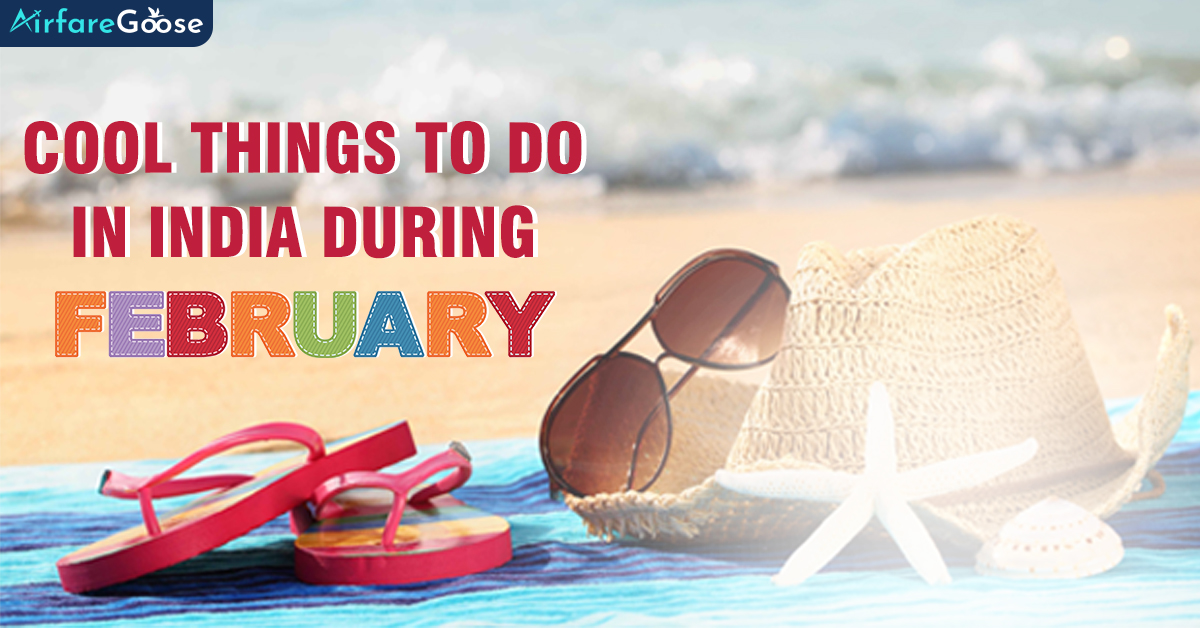 Summer Travel in February: Exotic Things to do in India!