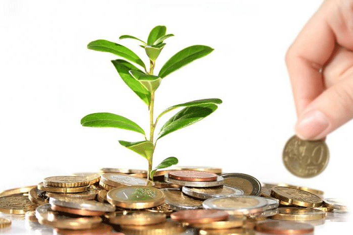 Carbon Offset- Purchase Guide