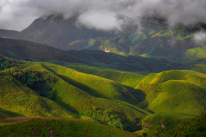 Dzukou Valley, Nagaland