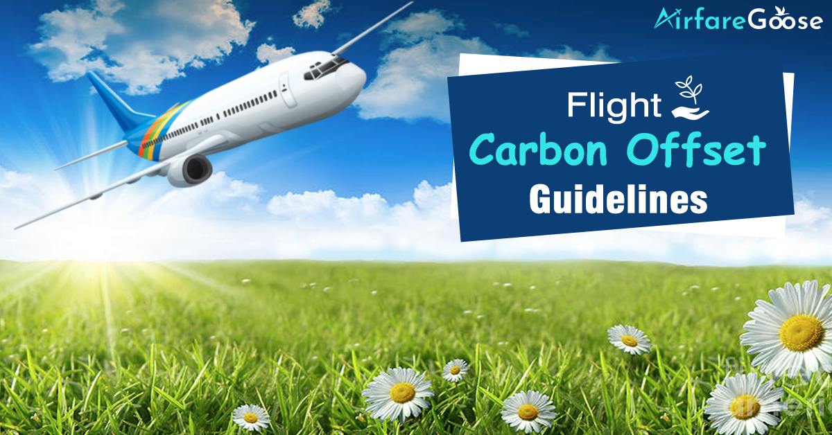 6 Flight Carbon Offset Guidelines for Air Travelers